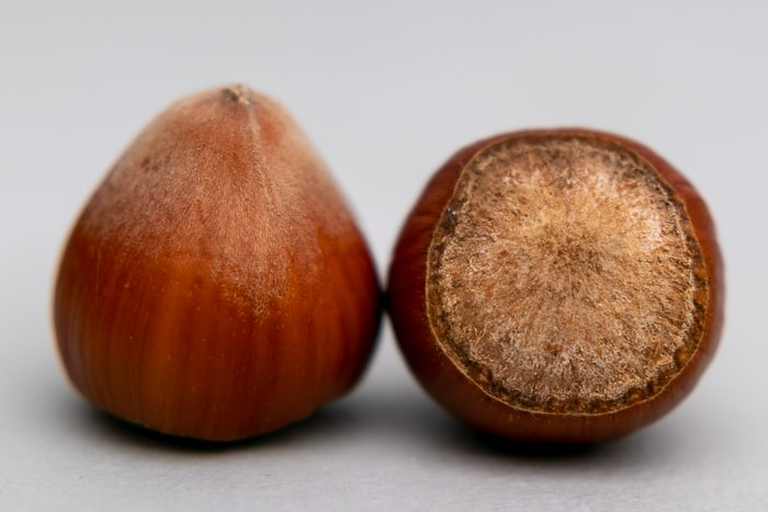 Two hazelnuts side by side